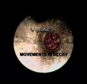 MOVEMENTS IN DECAY