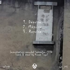 z(xW+yV) : Trois Prises
